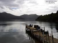 Queen Charlotte's Sound, New Zealand